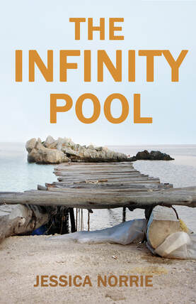 The Infinity Pool by Jessica Norrie